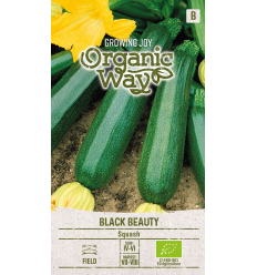 KABAČI ORGANIC WAY BLACK BEAUTY
