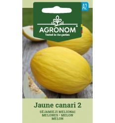 MELONES JAUNE CANARI 2
