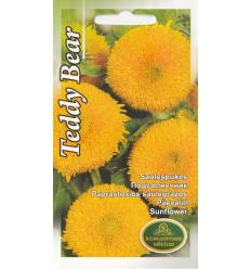 Saulespuķes Teddy Bear