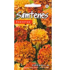 SAMTENES FIREBALL F1