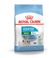 ROYAL CANIN SHN 1,0KG MINI STARTER PUPPY KUCĒNIEM