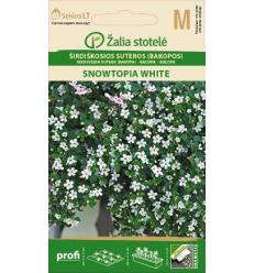 SIRDSVEIDA SUTERA (BAKOPA) SNOWTOPIA WHITE