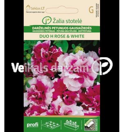 PETUNIA MULTIFLORA DUO H ROSE & WHITE
