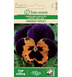 ATRAITNĪTES ORANGE VIOLET