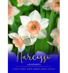 NARCISES KATIE HEATH 73469