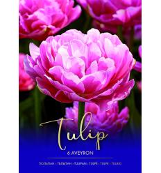 TULPES AVEYRON 75014