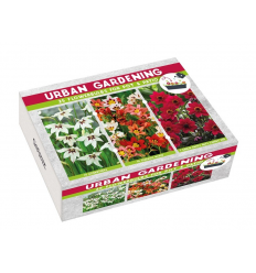 K - URBAN GARDEN RED RAUDONA 01893